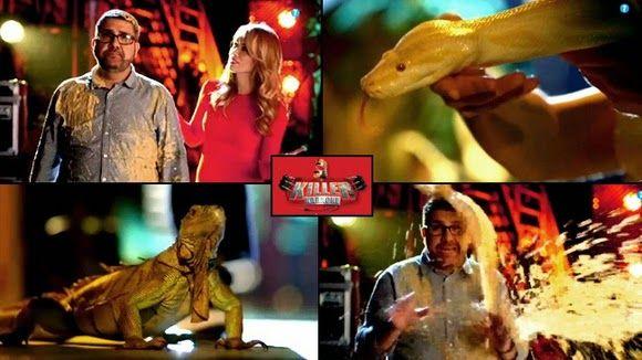 ECO-DIARIO-ALTERNATIVO: Pide a Mediaset que no use animales en su programa Killer Karaoke