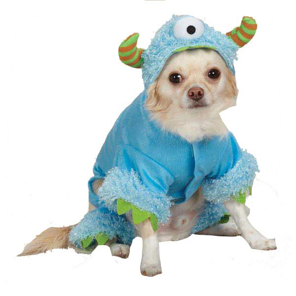 best 25 funny dog halloween costumes ideas on pinterest halloween things to do black halloween costumes and pet safe - Dogs With Halloween Costumes On