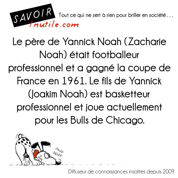Le père de Yannick Noah (Zacharie Noah) était footballeur professionnel et a gagné la coupe de France en 1961. Le fils de Yannick (Joakim Noah) est basketteur professionnel et joue actuellement pour les Bulls de Chicago.