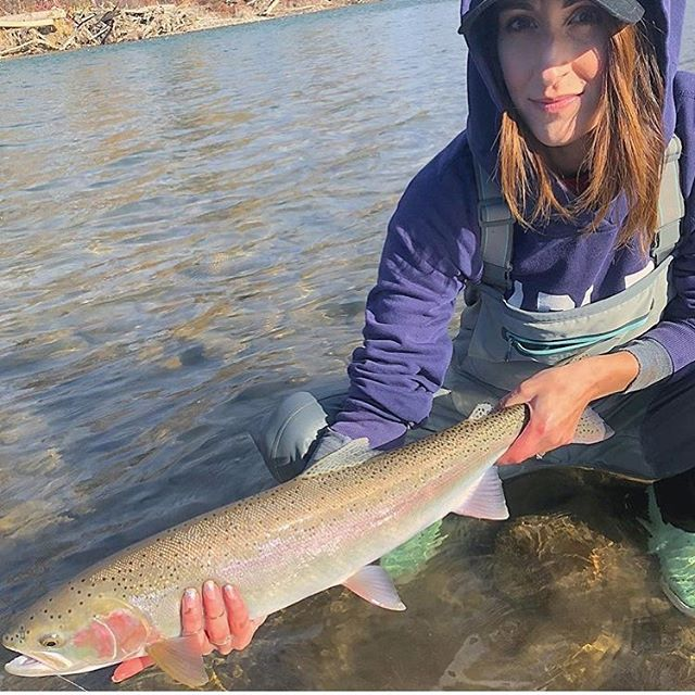 Lauren Euverman The Troutporn Way Regram Via Www Instagram Com P Bydvjweh17z Fly Fishing Women Fly Fishing For Beginners Fly Fishing
