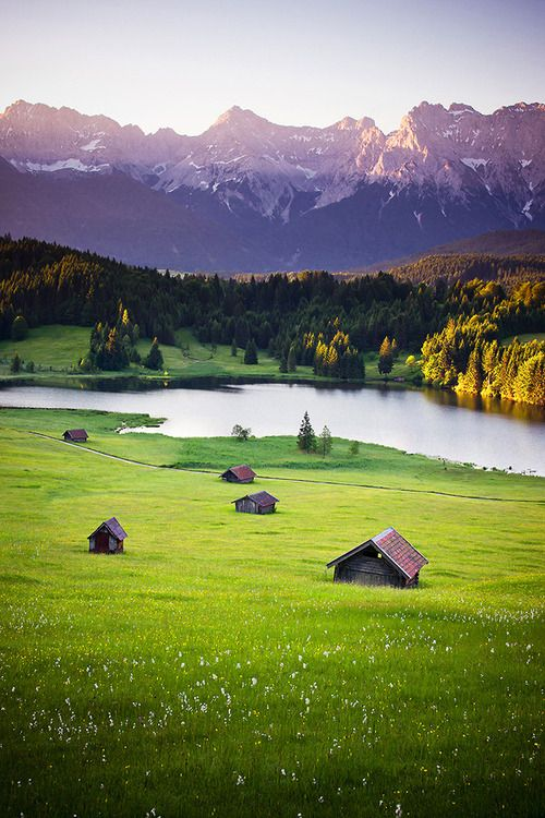 Karwendel, Bavaria ~ Germany... I want to just lay in this field with the person im crazy about:)
