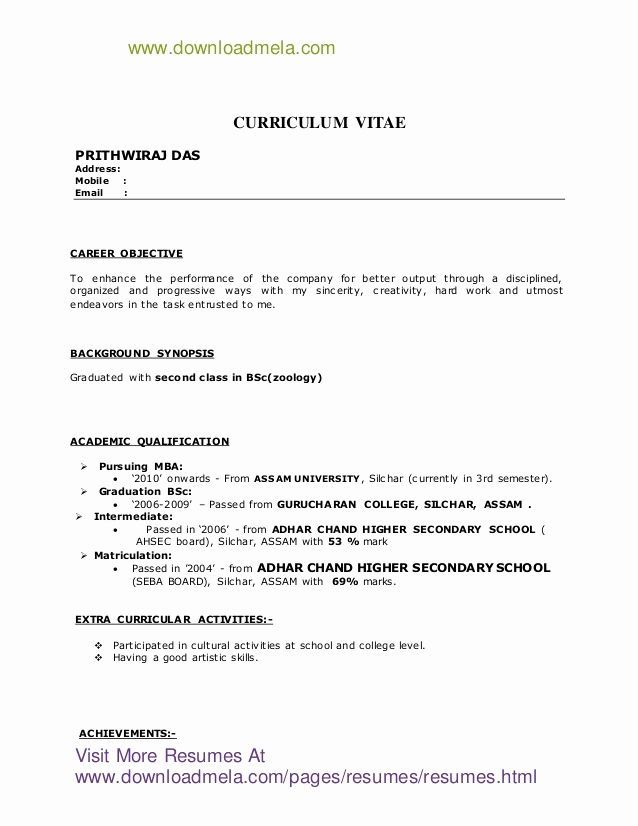For Bsc Zoology Resume Format Resume Resume Format For Freshers