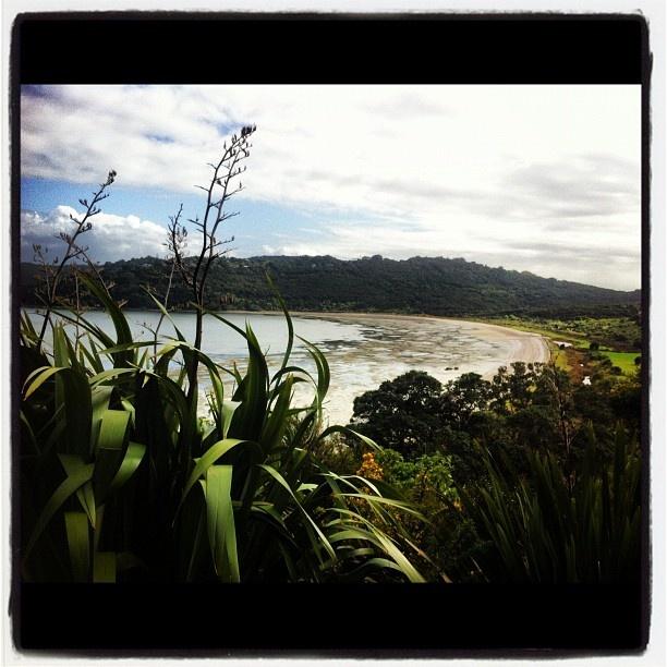 Whakanewha Regional Park, Waiheke Island, Auckland, NZ