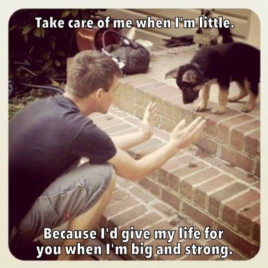 True. This is very heartwarming.