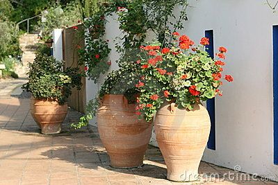 Mediterranean Garden Love Large Pot Filled With Tall Geraniums Mediterranean Gardens