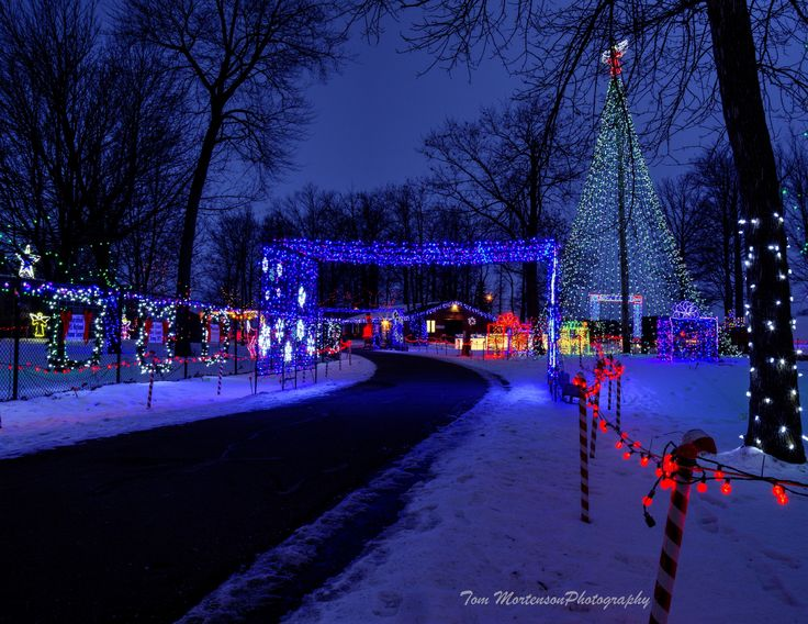 11 best images about ROTARY LIGHTS on Pinterest | Trees, Tomato ...
