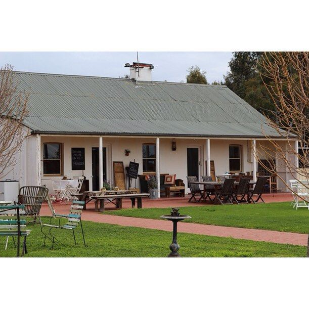 Last week we paid a visit to Susan & Michael Papps' Yelland and Papps cellar door. After a great tasting (fave wine was the Second Take Grenache) we had a tour of the winery, and a delicious platter for lunch - get on it! Read more about Yelland and Papps with the link in our profile.  #Barossa #BarossaDirt #BarossaValley #wine #winery #winecountry #SouthAustralia #cellardoor #tastingroom @yellandandpapps