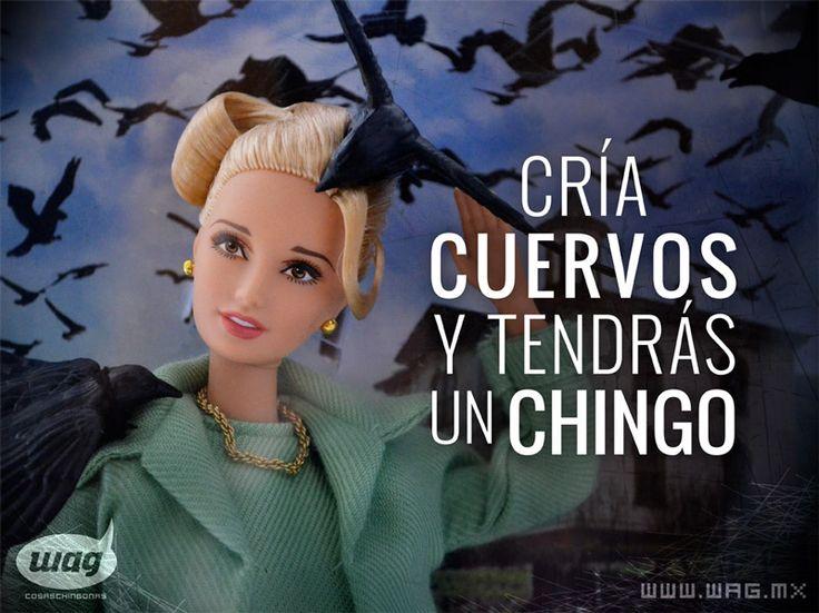 Frases Chingonas Cr 237 A Cuervos Y Tendr 225 S Un Chingo Frase Del Fil 243 Sofo De G 252 233 Mez This Work Is