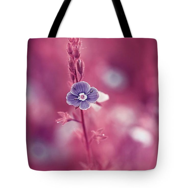 Beautiful Tote Bag featuring the photograph Small Romantic Violet Flower by Oksana Ariskina. Small blue wildflower forget-me-not, closeup view on violet pink toned background. Available as mugs, posters, greeting cards, phone cases, throw pillows, framed fine art prints, metal, acrylic or canvas prints, shower curtains, duvet covers with my fine art photography online: www.oksana-ariskina.pixels.com #OksanaAriskina