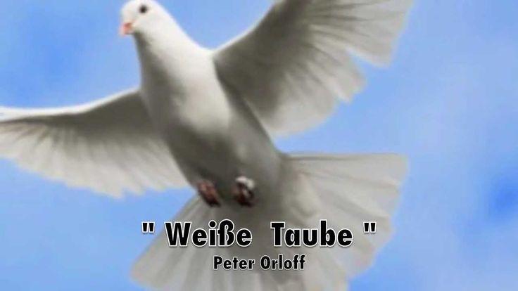 Weisse Taube - Peter Orloff