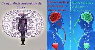 Risultati immagini per campo magnetico del cuore