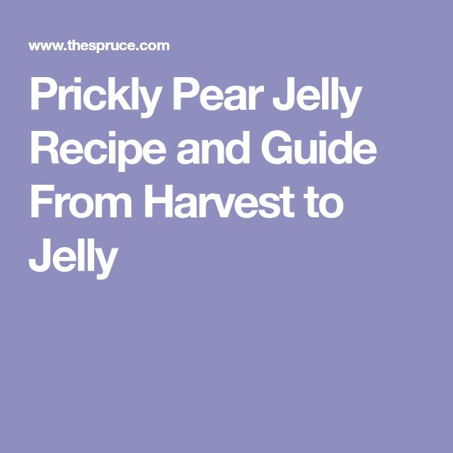 Prickly Pear Jelly Recipe and Guide From Harvest to Jelly