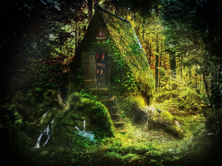 Witch cottage in the wild woods the otherworld for Witches cottage house plans