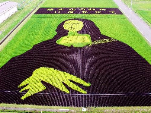2003年の作品「モナリザ」。遠くの顔が小さくなる反省点を残し、翌年への転機となった。このころから「田んぼアート」の名称が広がったという。緑、紫、黄の3色=青森県田舎館村提供  記事「モナリザ・観音様…田んぼアート進化 今年は7色の稲で」より