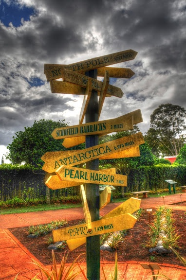 Where do you want to go?   Dole's Pineapple Farm, Oahu Island, Hawaii, USA. #VacationPlans