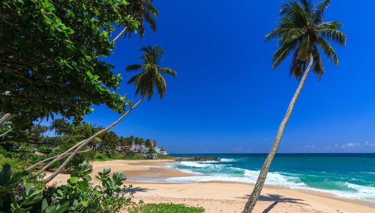 Amata dalle coppie in luna di miele, l'isola di Sri Lanka, circondata dall'Oceano Indiano, offre spiagge da sogno e acque cristalline che poco hanno da invidiare alle vicine Maldive
