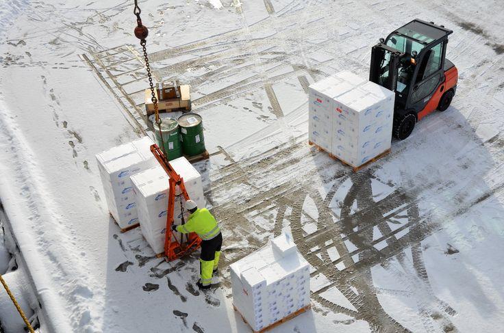 MS Lofoten er en viktig transportør av ferskfisk. Her blir kasser / paller med skrei lastet om bord på Sortland i mars 2015. foto: TGJ