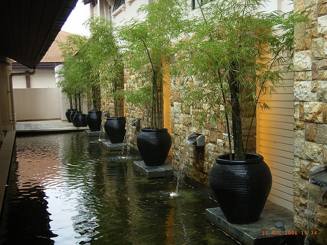 like the combination of wall pots and bamboo symetry and repetition
