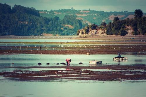 Fishermen in Castro, Chiloé, Chile