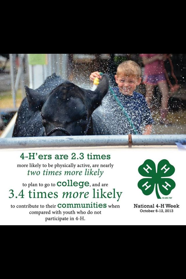 4-H has and always will be a huge part I my life...it has made me the person I am today.
