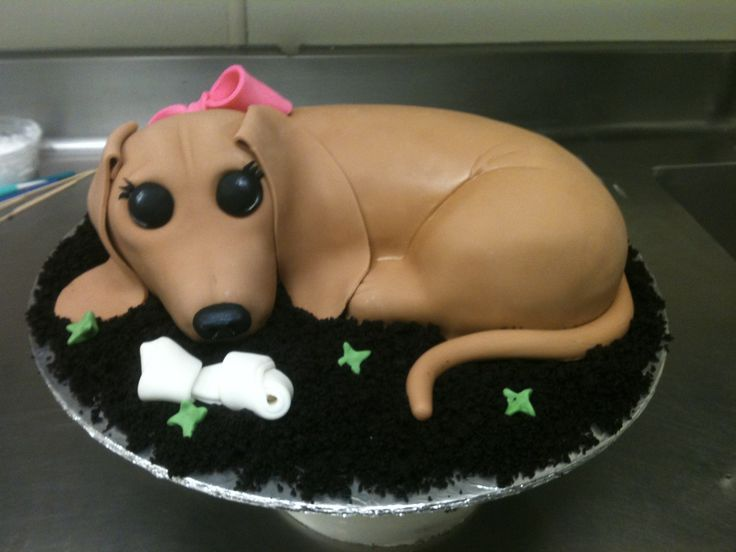 Best 25 Dachshund Cake Ideas On Pinterest Wiener Dogs