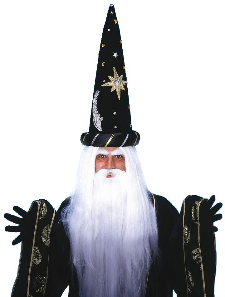 Merlin Beard Wig 46