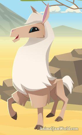 Animal Jam Llama Codes animal-jam-llama-codes-2  #AnimalJam #Animals #Lllama http://www.animaljamworld.com/animal-jam-llama-codes/