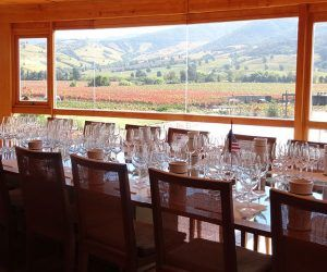 Colchagua Wine Day Tours from Santiago. Visit Chile's premier wine region Colchagua Valley. Only 2 1/2 hours from Santiago. Chile Wine Tours.