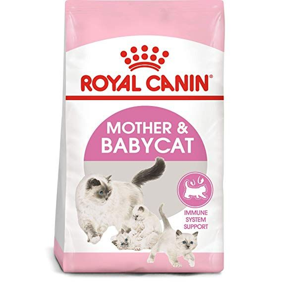 Royal Canin Feline Health Nutrition Mother Babycat Dry Cat Food For Newborn Kittens And Pregnant Or Nursing Cats 3 Feline Health Dry Cat Food Cat Nutrition