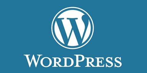 How Wordpress Took the CMS Crown from Drupal and Joomla? - To know more visit our site ~ http://blisstering.com/
