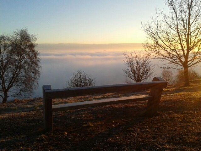 Stephs Seat