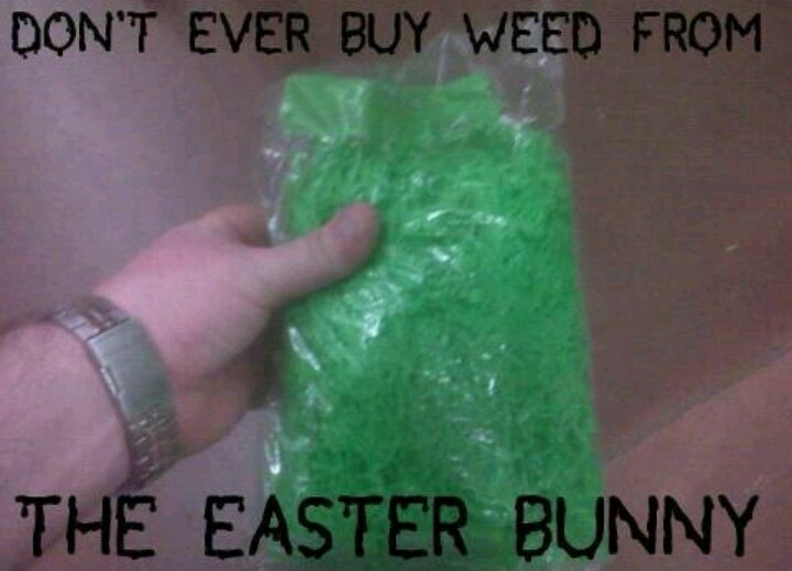 Image result for never buy weed from the easter bunny