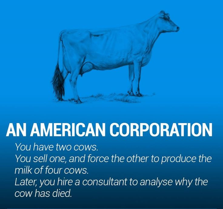 The world economy explained with just two cows - Album on Imgur