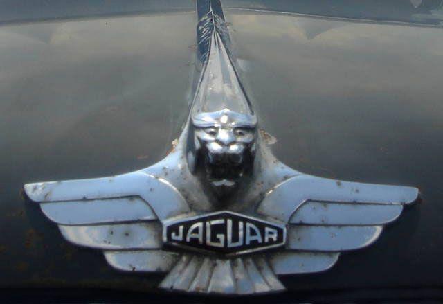1960 Jaguar MK2 hood ornament