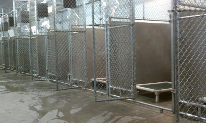 Wow! Over the weekend, Tallahassee Animal Services took all the shelter animals to the mall for a Mega Adopt-athon. They had to stop with the 186th adoption... because 100% of the shelter animals found a home! Here's a glorious sight, an EMPTY shelter! Congrats to the volunteers for a super awesome job! ^..^
