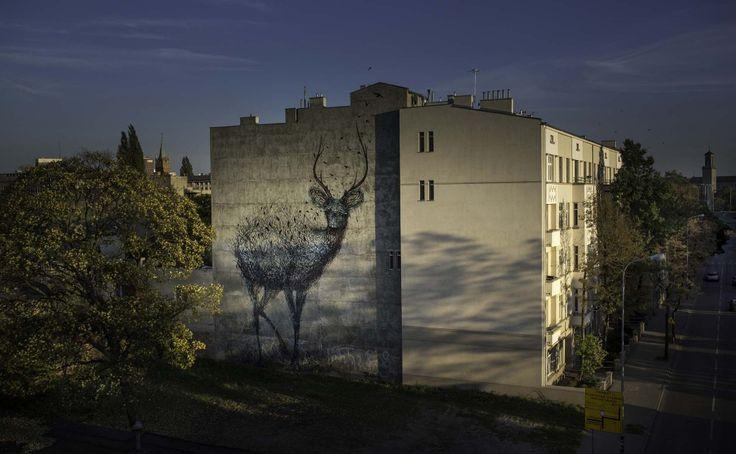 DalEsat in Lodz, Poland