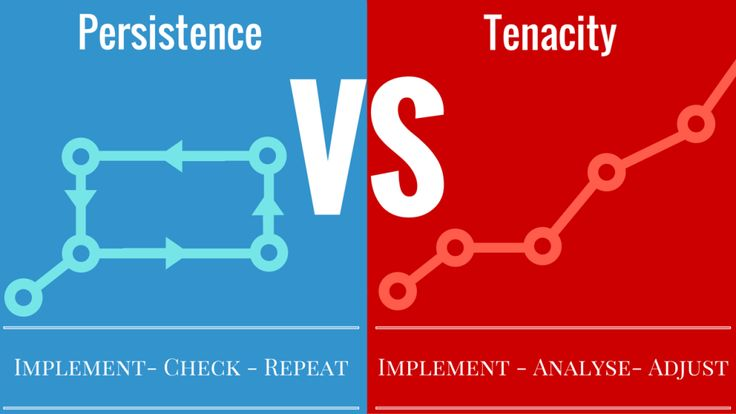 What is the Difference Between Persistence and