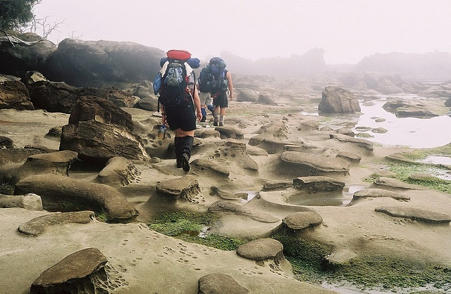 Sandstone Highway, West Coast Trail - my home territory. Best hike for anyone, anytime. Amazing.