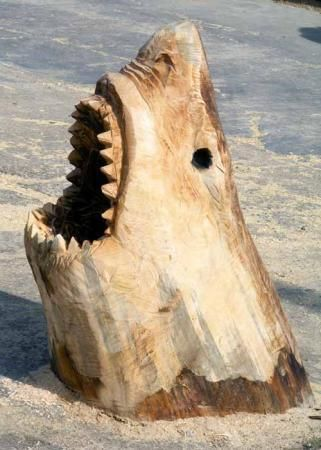 Chainsaw Carving - Jaws