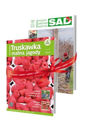 pakiet_MPS-SAD ,TMJ - prenumerata www.plantpress.pl