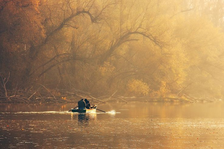 Morning On The Lake autumn, trees, morning, people, water, boat, nature, river, fall, natural, season, seasonal, branches, shore, fishing, fishermen, men, hobby, flow, outdoors, dusk, catch, environment, row, rowing