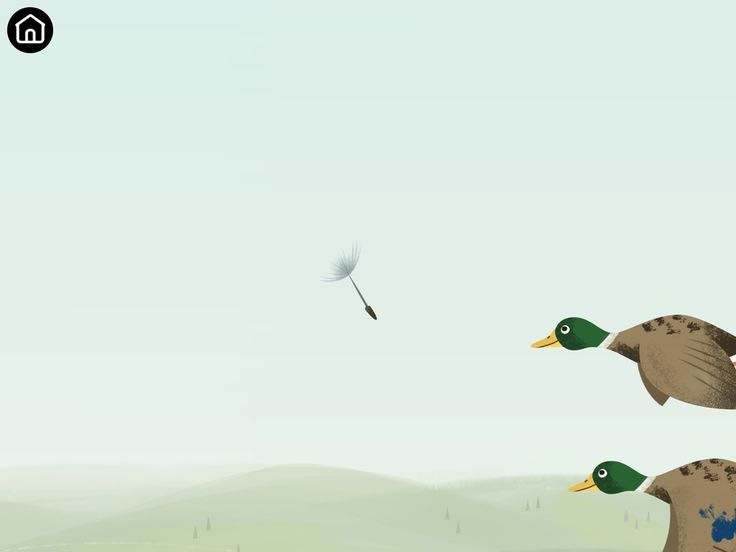 Flying Dandelion seed