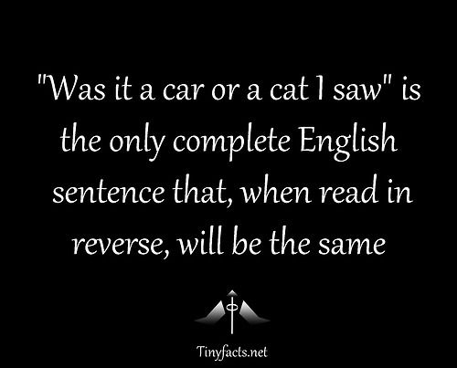 Was it a car or a cat i saw is the only complete english for Read in reverse