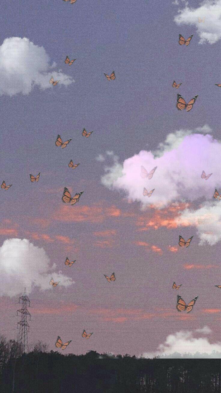 carta da parati carino butterfly wallpaper aesthetic