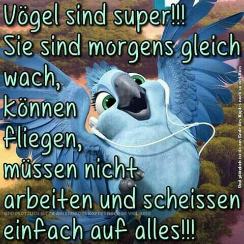 Sprüche-Bild von Hilde | Morgen sprüche, Witzige guten ...