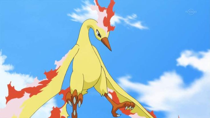 Pokemon Go's Team Valor is represented by Moltres. (Pokemon Wiki)
