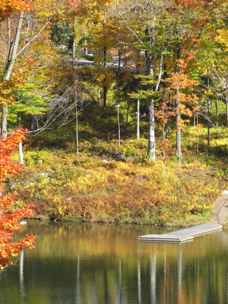 une marche en automne