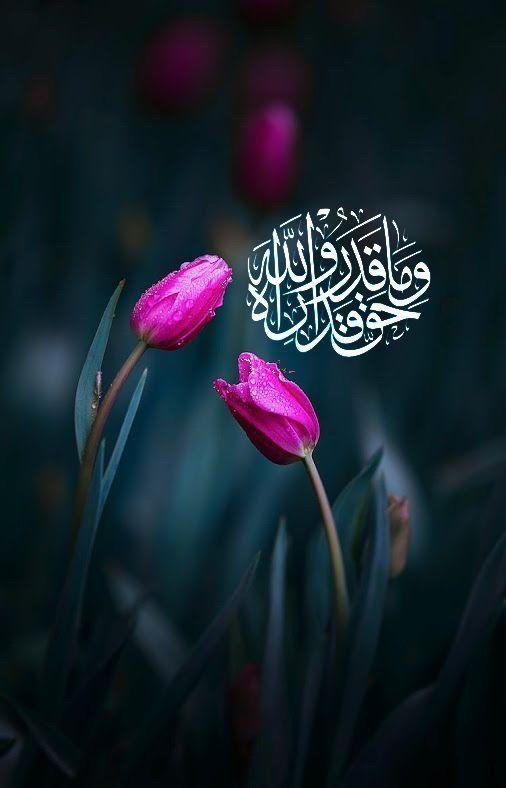 Исламские картинки со смыслом на аву в ватсап, открытки летием