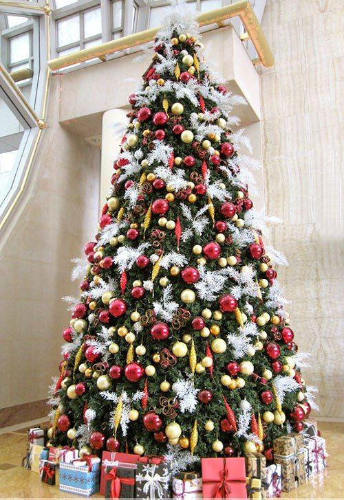 Come scegliere l 39 albero di natale for Where do christmas trees come from