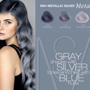 Como Conseguir El Color Plata En Tu Pelo Descubrelo Cabello Plata Cabello Gris Plata Tecnicas De Color Para Cabello